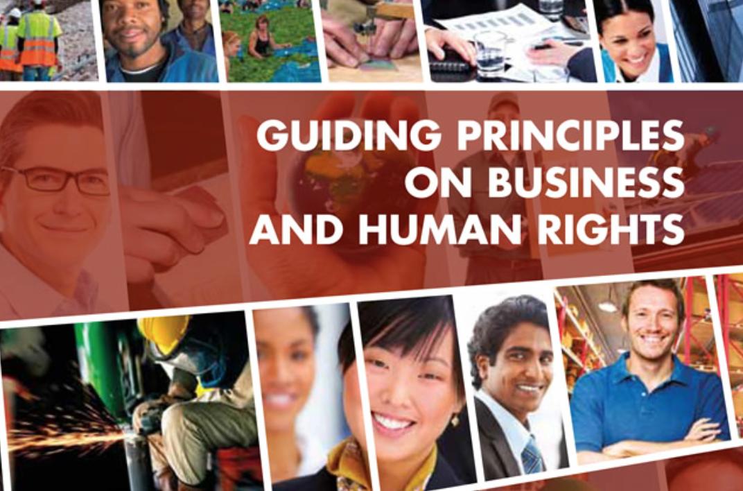 Normativa internacional: empreses i drets humans