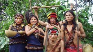 L'amenaça a les poblacions indígenes